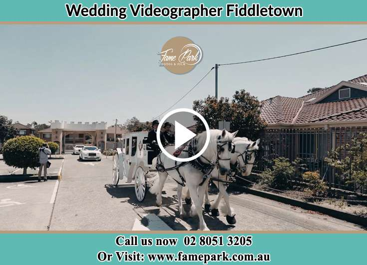 The wedding carriage Fiddletown NSW 2159